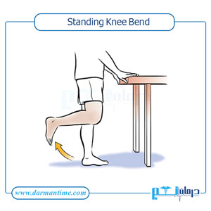 Standing Knee Bend